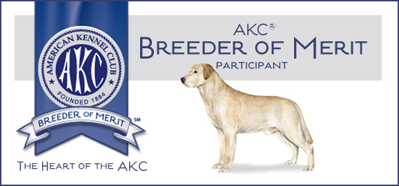 Breeder of Merit Web Banner